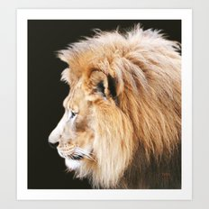 Still King Art Print