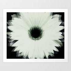 Into the Flower Art Print