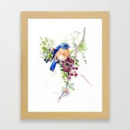 Bluebird and Berries Framed Art Print