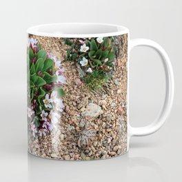 Alpine Spring beauty Colorado Coffee Mug