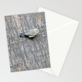 TEXTURES -- Warbler on Palm Bark Stationery Cards