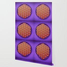 Flower Of Live - Sunlight On Purple Ground Wallpaper