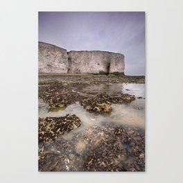 Whiteness Arch Canvas Print