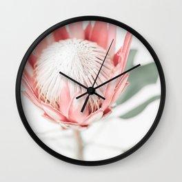 King Protea III Wall Clock