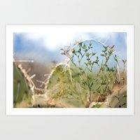 Prickly Creosote Art Print