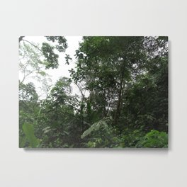 Rainforest Vibes Metal Print