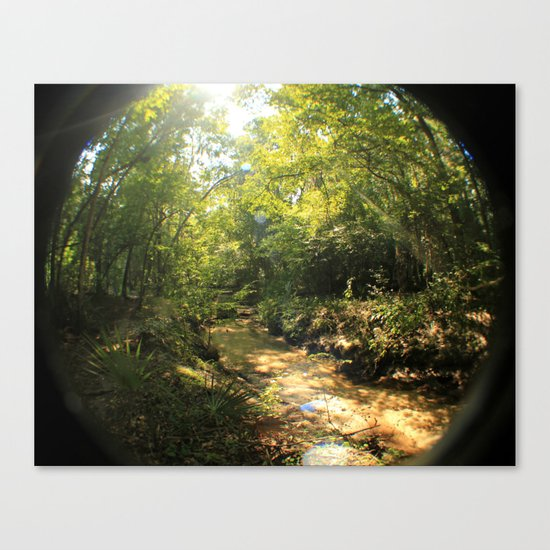 creeky Canvas Print