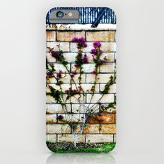 Flowers on a wall. iPhone 6s Slim Case