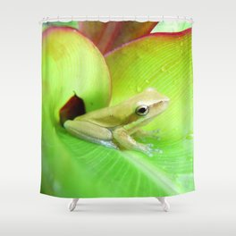 Baby Frog Shower Curtain