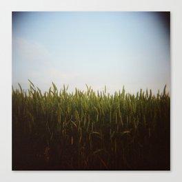 Midwest Field 02, Holga Canvas Print