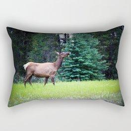 Dramatic Pose Rectangular Pillow