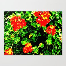 Red Flowers (Edited)  Canvas Print