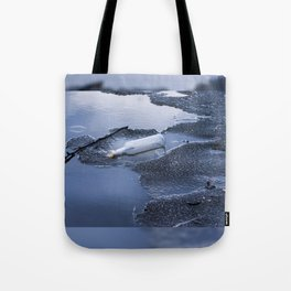bottle garbage on melting ice Tote Bag