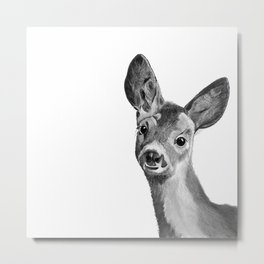 Baby deer in black and white Metal Print