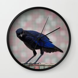 Quizzical whistling thrush Wall Clock