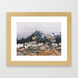 Mountains + Flowers Framed Art Print