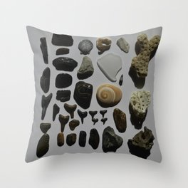 Beach Day Fossils Throw Pillow