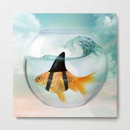 Goldfish with a Shark Fin 19 Metal Print