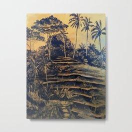 Bali. Rice terraces Metal Print