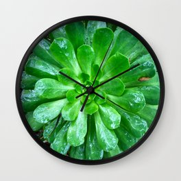 Giant succulent flower Wall Clock