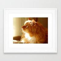 tigger Framed Art Prints featuring Tigger sunshine by ACamp