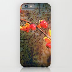 Fields Of Red Berries In The Evening iPhone 6s Slim Case