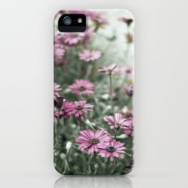 if they don't believe us now iPhone Case