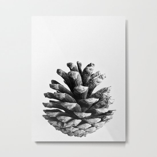 pinecone nature plants Metal Print