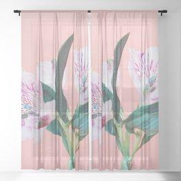 Peruvian Lily Sheer Curtain