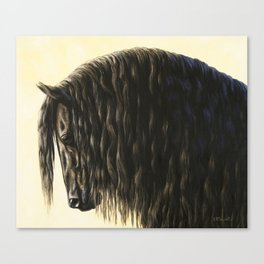 Black Friesian Draft Horse Canvas Print