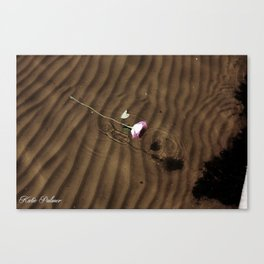 Lost Rose Canvas Print
