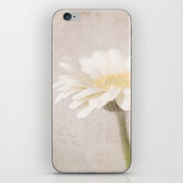 Gerbera Goodness iPhone Skin