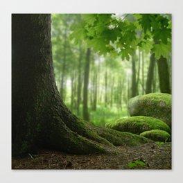 Forest harmony Canvas Print