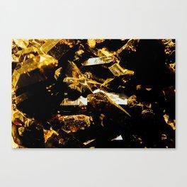 Black and Gold Tourmaline Canvas Print
