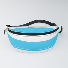 Aqua Teal- Maritime Aqua Teal Stripes Pattern - Mix & Match Fanny Pack