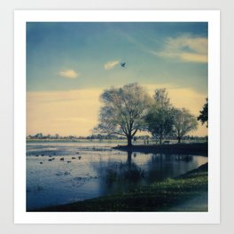 Lake Wendouree Art Print