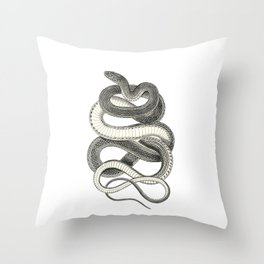 snake vintage style print serpent black and white 1800's Throw Pillow