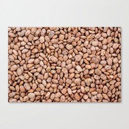 Pinto beans Canvas Print