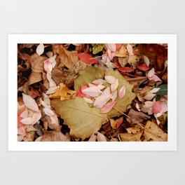 Leaves of Change Art Print