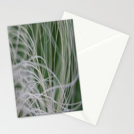 Abstract Image of Tropical Green Palm Leaves  Stationery Cards
