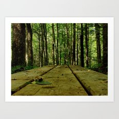 plank Art Print