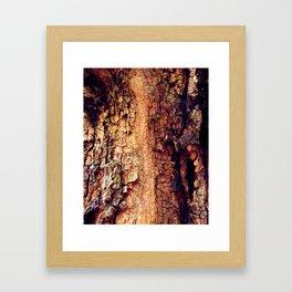 Close to Nature Framed Art Print
