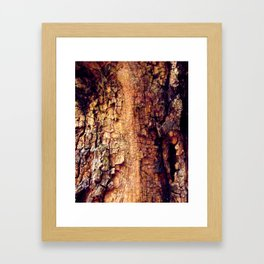 Close to Nature Framed Art Print