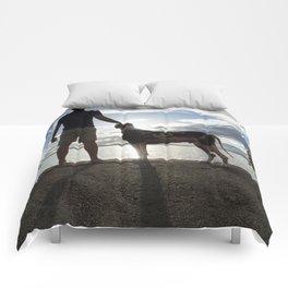 Regal Gentlemen Comforters