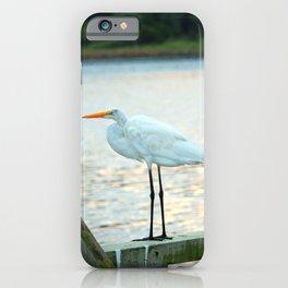 Egret Keeping Watch iPhone Case