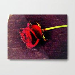 Rose #3 Metal Print