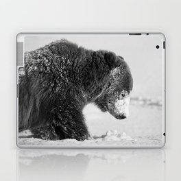 Alaskan Grizzly Bear in Snow, B & W - I Laptop & iPad Skin