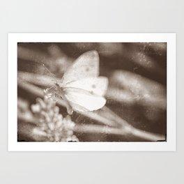 Butter Soft Art Print