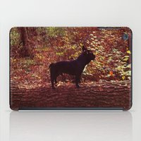 frenchie iPad Cases featuring Frenchie by Krizan