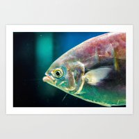 swim Art Prints featuring Swim by Iain Christopher Mclellan Bastidas